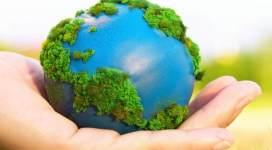 ecologia tips